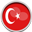 SENDFiles in Turkish